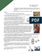 Mecanisme Simple - Informatii