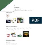 Ejemplos Investigación pura.docx