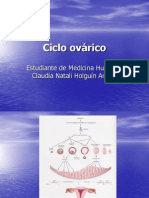 ciclo-ovarico-1196309260772422-4