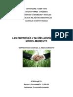 Empresa y Ambiente