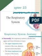 Rspiratory System (1)