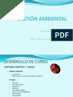 Gestion ambiental 01