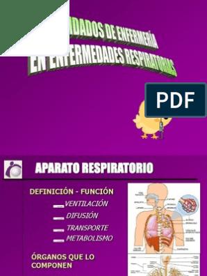 infeccion de vias respiratorias bajas power point