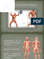 Tejido Muscular Ppt