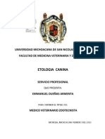 Manual de Etologia Canina