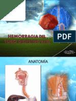 Hemorragia Del Tubo Digestivo Alto y Bajo