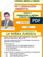 CLASE 1 Introduccion Al Sistema Juridico Ambiental