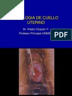 Citologia de Cuello Uterino.