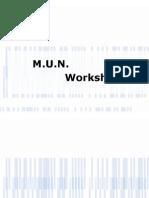 MUN Workshop Presentation