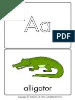 Alphabet FlashcardsColor