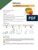 Mango - Cartilla 02 Condiciones Agroclimaticas Del Cultivo Del Mango