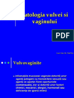 Pat. Vulvei Si Vaginului- PPT