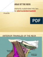 Neck Traingles 44