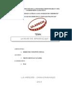 DERECHO CONTITUCIONAL.docx