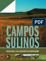 Campos Sulinos - Valerio de Patta Pillar