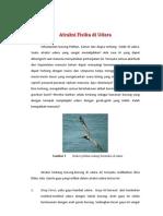 A_atraksi Fisika Di Udara