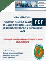 COMPORTAMIENTO ORGANIZACIONES 2007