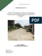 Informe Detallado Cubarral Febrero (2)