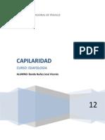 CAPILARIDAD BANDA NUÑEZ JOSÉ