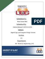 Saleem Title Page. Docx (2)