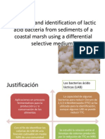 Isolation and Identification of Lactic Acid Bacteria Articulo