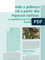 Carvalho, 2008 Experiência da Cooperativa Grande Sertão