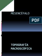 exponeurobalaam-091019163543-phpapp02