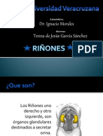 riones-120304095716-phpapp01