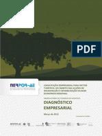 Diagnostic o Empresa Rial Marco 2012