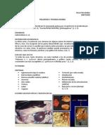 POLUROSIS Y TIFOIDEA AVIARIA.docx