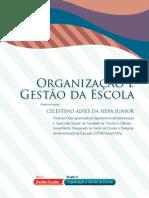 u1_d27_v2_visaogeral Organização e Gestão da Escola