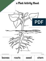 Parts Plant Activity Sheet