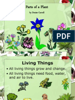 Parts of a Plant - PowerPoint