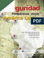 Inseguridad Perspectivas America Latina