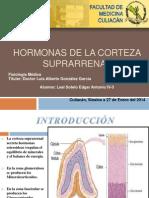 Vi Hormonas de La Corteza Suprarrenal Vi Leal 27-Ene-14