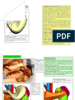 Www.oftalux.ro Carti-Anatomie Anatomia-Viscerelor LP 19 STOMACUL SPLINA