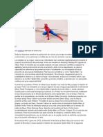 Biografia Spiderman
