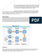 notes- meiosis