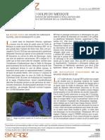 Etude-Cas BP Implications Dommages Dec2010