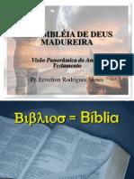 VISÃO PANORÀMICA DO ANTIGO TESTAMENTO