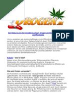 Der Diskurs um die Schädlichkeit von Drogen am Beispiel von Kokain und Marijuana