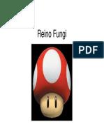 Reino Fungi2