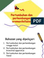 PERTUMBUHAN & PERKEMBANGAN OROMAXILOFASIAL