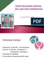Perbedaan Anak Laki-laki Dan Perempuan