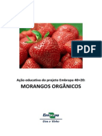 Cartilha Acao Educativa Morangos Organicos PDF