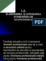 1.2.elaborare_standarde_ocupationale