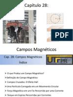 Cap 28 - Campos Magneticos