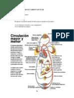 ANATOMÍA Y FISIOLOGÍA Aparato cardiovascular