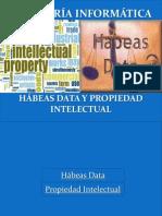 Habeas Data y Propiedad Intelectual 5to a b 2013 2014