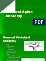 Cervical Anatomi